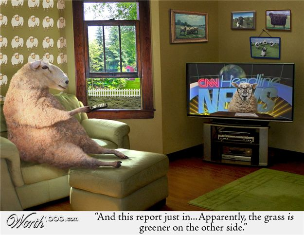 sheep_watching_tv_by_8puppydevil8.jpg
