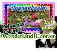 1st Place Wonderland Contest