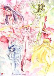 Sailor Wings