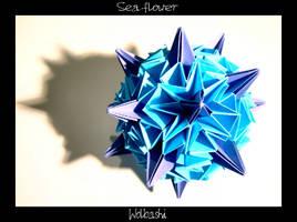 Sea flower by wolbashi