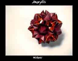 Amaryllis by wolbashi