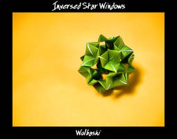 Inverted Star Windows by wolbashi