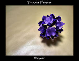 Passion Flower by wolbashi