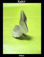 Rabbit by wolbashi