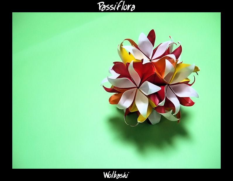 Passiflora by wolbashi