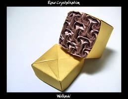 Rose Crystalisation by wolbashi