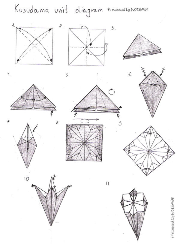 cactus unit diagram by wolbashi on deviantart