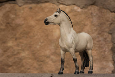 Linnea by PegasusCreations