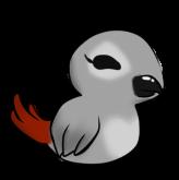 Birdy by Snowlly