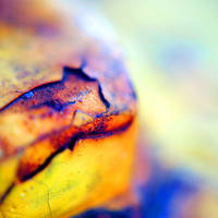 cracked by photographybyfallon
