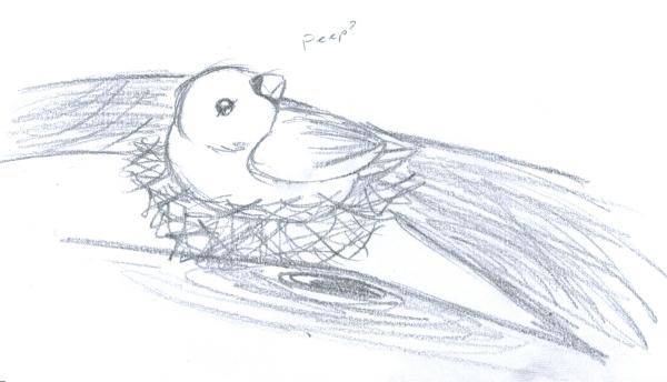 Day 049 - Quick Bird Sketch By SherokuTakari On DeviantArt