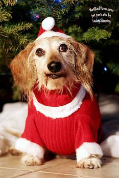 Christmas Weenie