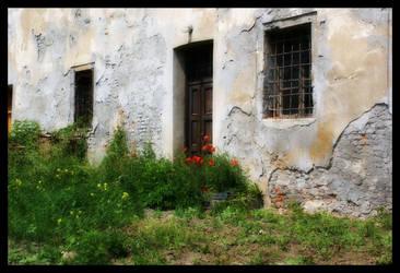 Door and Flowers I