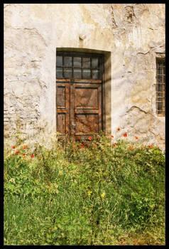 Door and Flowers II