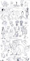 Senior Doodles Q1