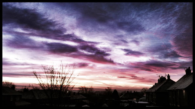Mixed berry skies