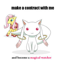 coobie wants to make a contract