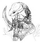 Warrior Salamander