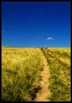 Long road ahead...