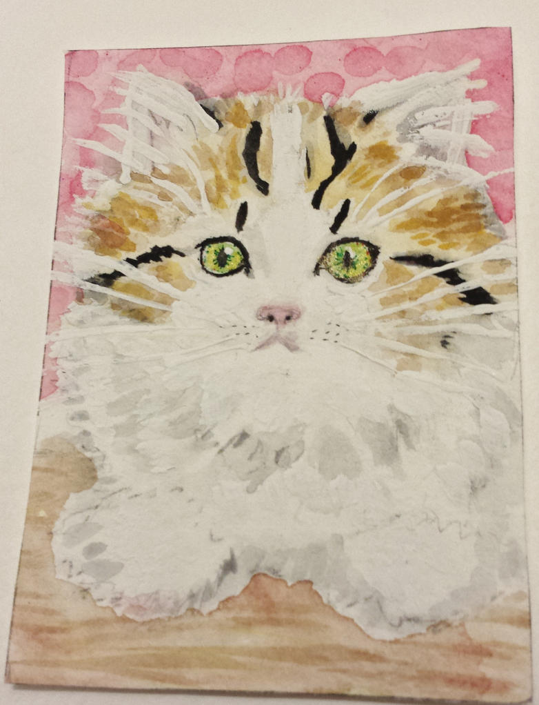 CutiePie  kitty  cat  watercolor by tulipteardrops
