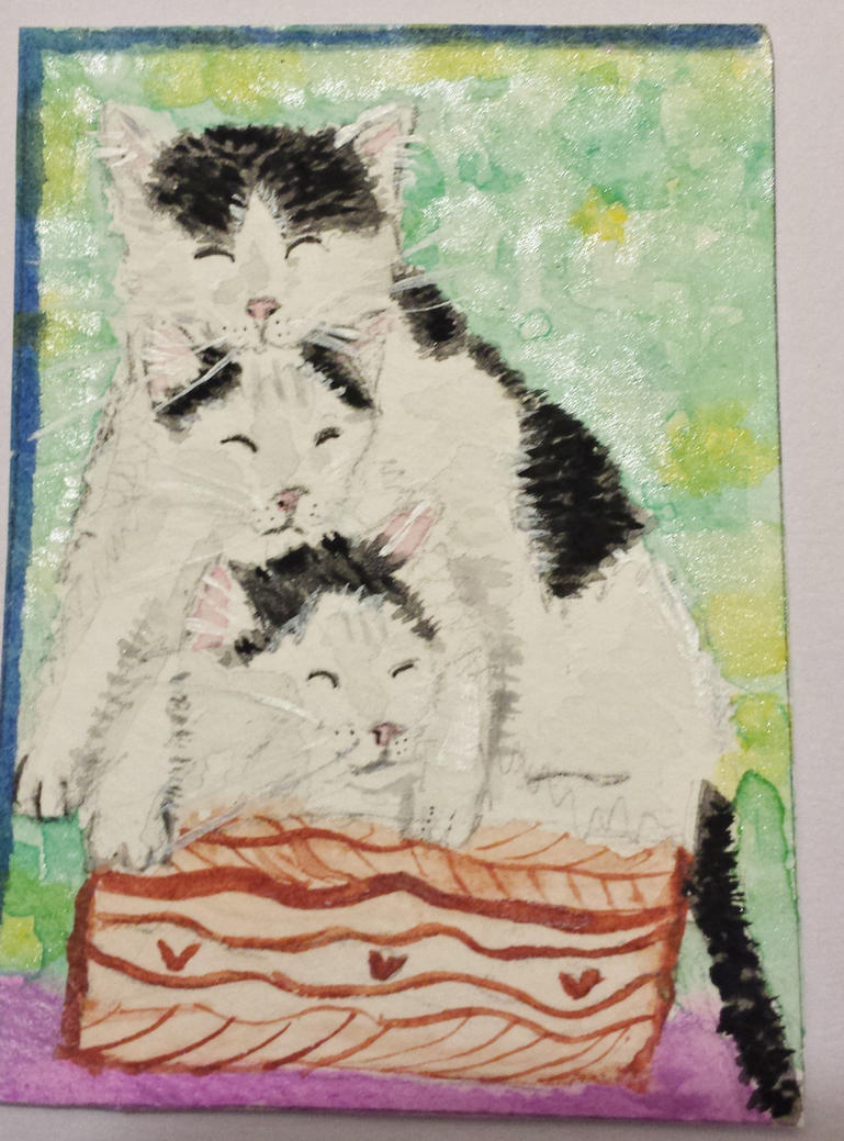 NapTime kitty  cats   watercolor by tulipteardrops
