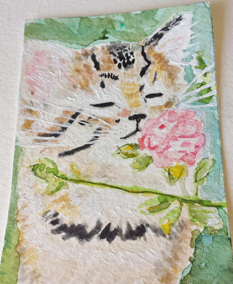 Kitty cat smelling  a flower watercolor by tulipteardrops