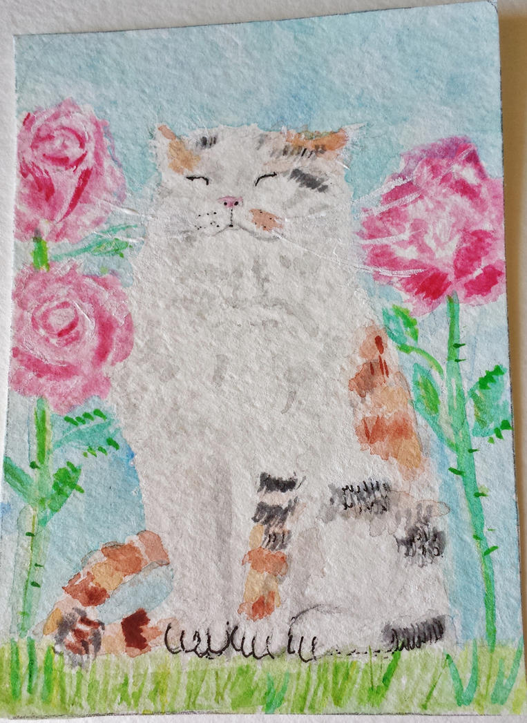 Suzie Q kitty cat roses watercolor by tulipteardrops