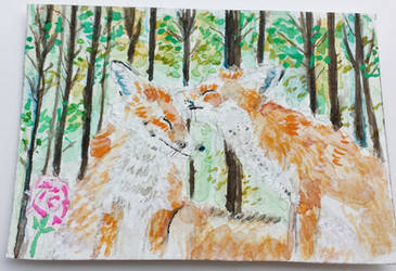 Fox  love kisses  watercolor ACEO original by tulipteardrops