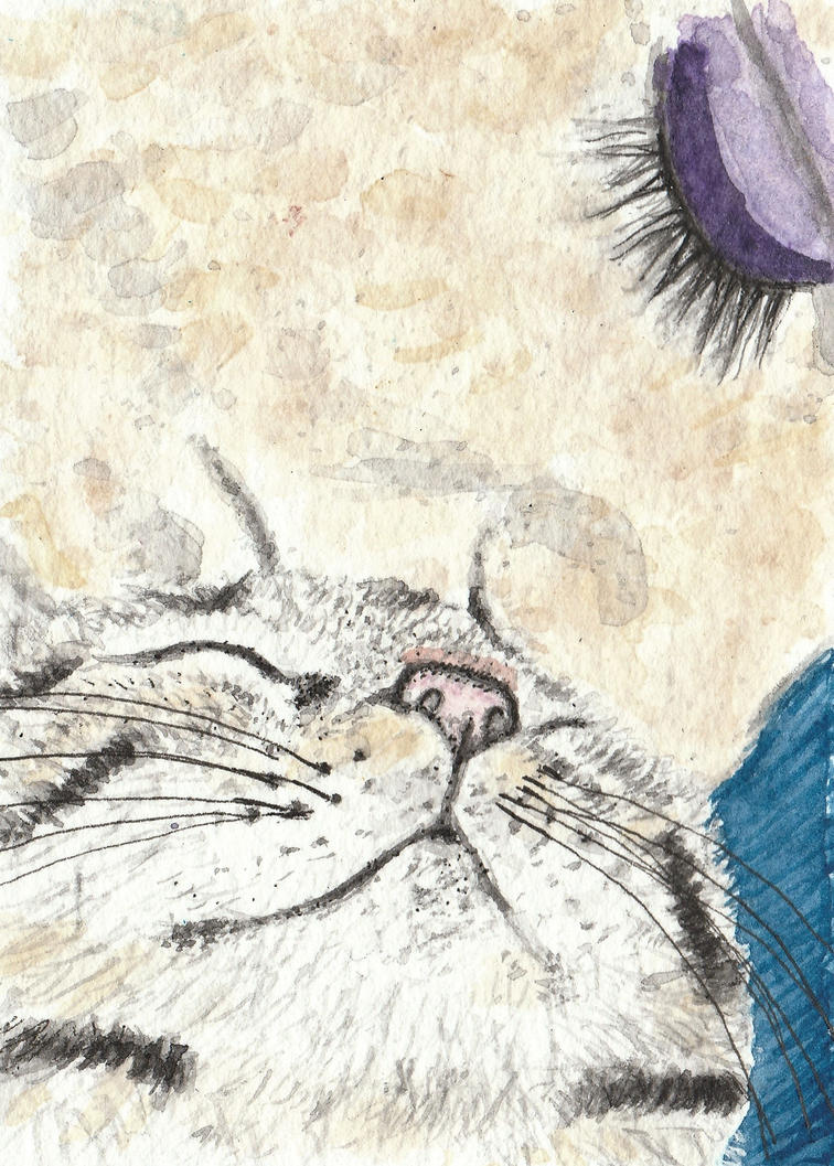 Tabby cat watercolor aceo original painting by tulipteardrops