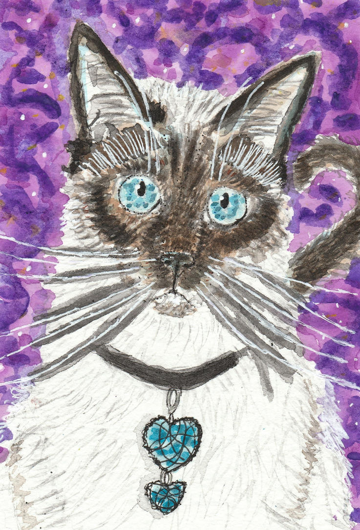 Siamese cat  watercolor  painting by tulipteardrops