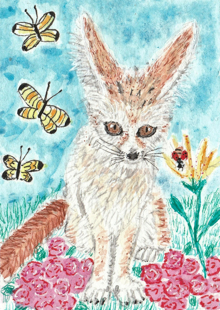 Fennec fox watercolor aceo painting by tulipteardrops