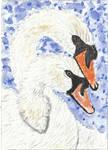 Swan hug aceo watercolor painting