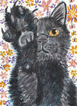 black cat with paw  up  watercolor  aceo painting by tulipteardrops