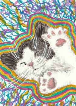 Kitten acrylic aceo painting