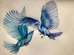 Birds need their halfs too by EosOfDawn