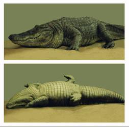 Eraser: Fake Alligator by EvanCampbell