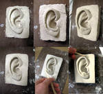 Ear Sculpture part 1