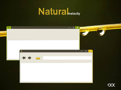 Natural metacity - Mockup