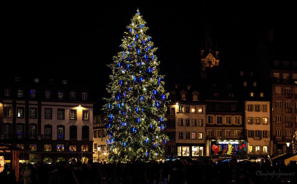 Huge Xmas Tree - Strasbourg 2015 by Cloudwhisperer67