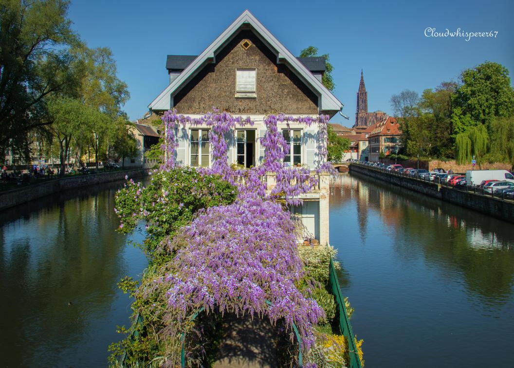 Summer in April... Strasbourg 2017 (1) by Cloudwhisperer67