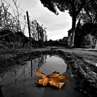 rome 115 by AlexGrifo