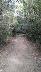 Gorropu's passage 4