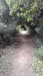 Gorropu's passage 5