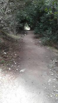 Gorropu's passage 6