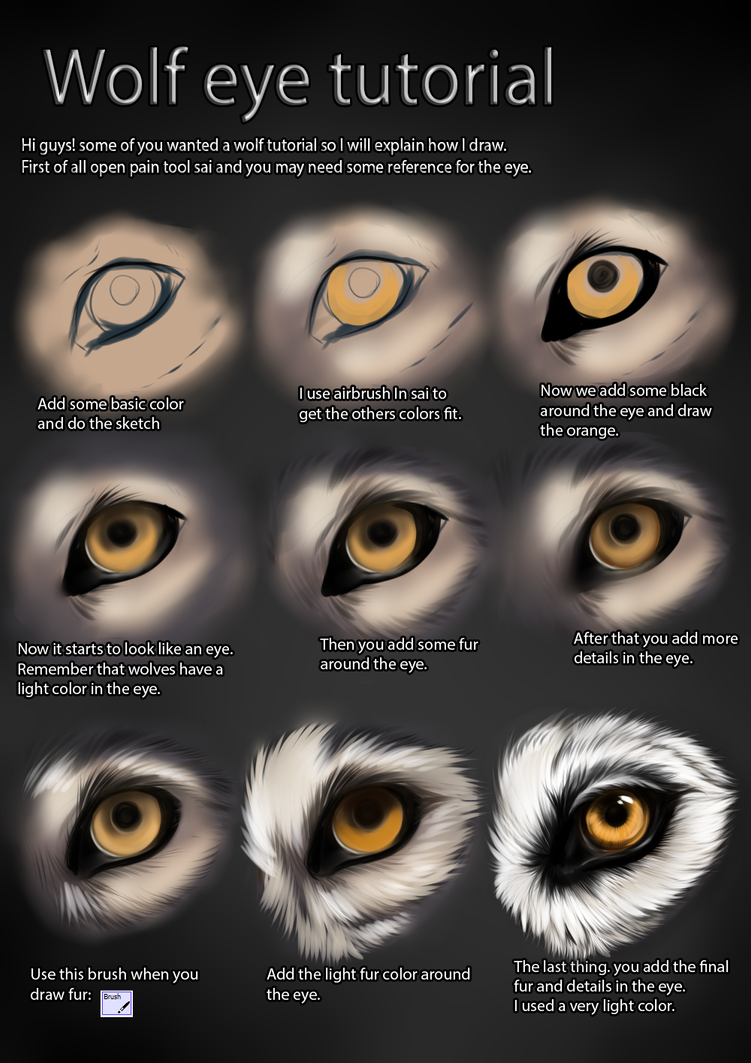 Wolf Eye Tutorial By Themysticwolf