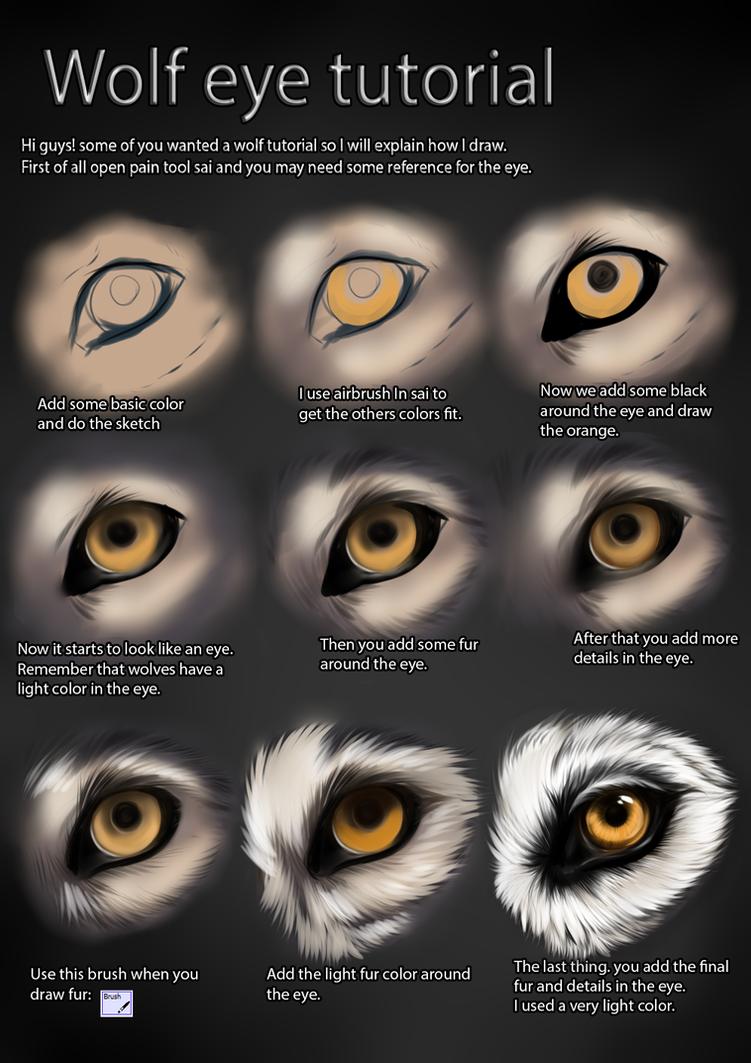 Wolf eye tutorial by themysticwolf on deviantart wolf eye tutorial by themysticwolf ccuart Images