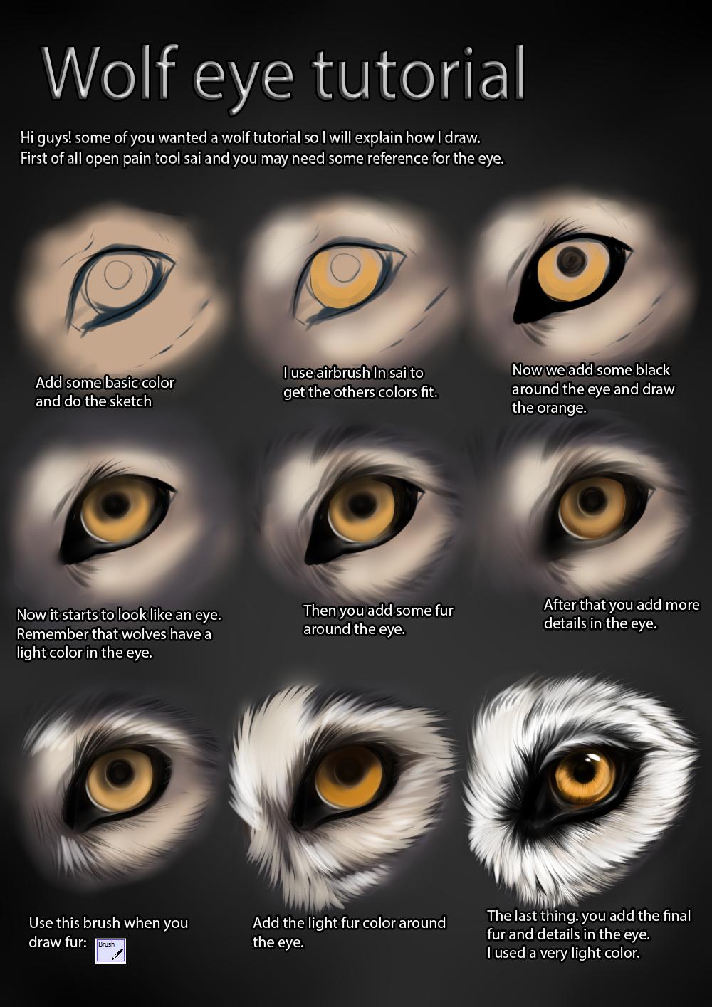 Wolf eye tutorial by TheMysticWolf