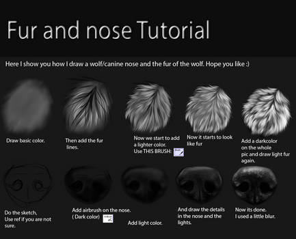 Nose and fur Tutorial