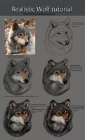 Realistic Wolf Tutorial