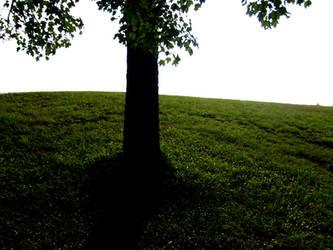 a tree by danx64